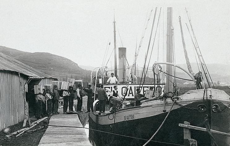Historia Sidra El Gaitero